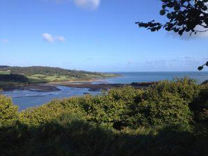 Dulas estuary